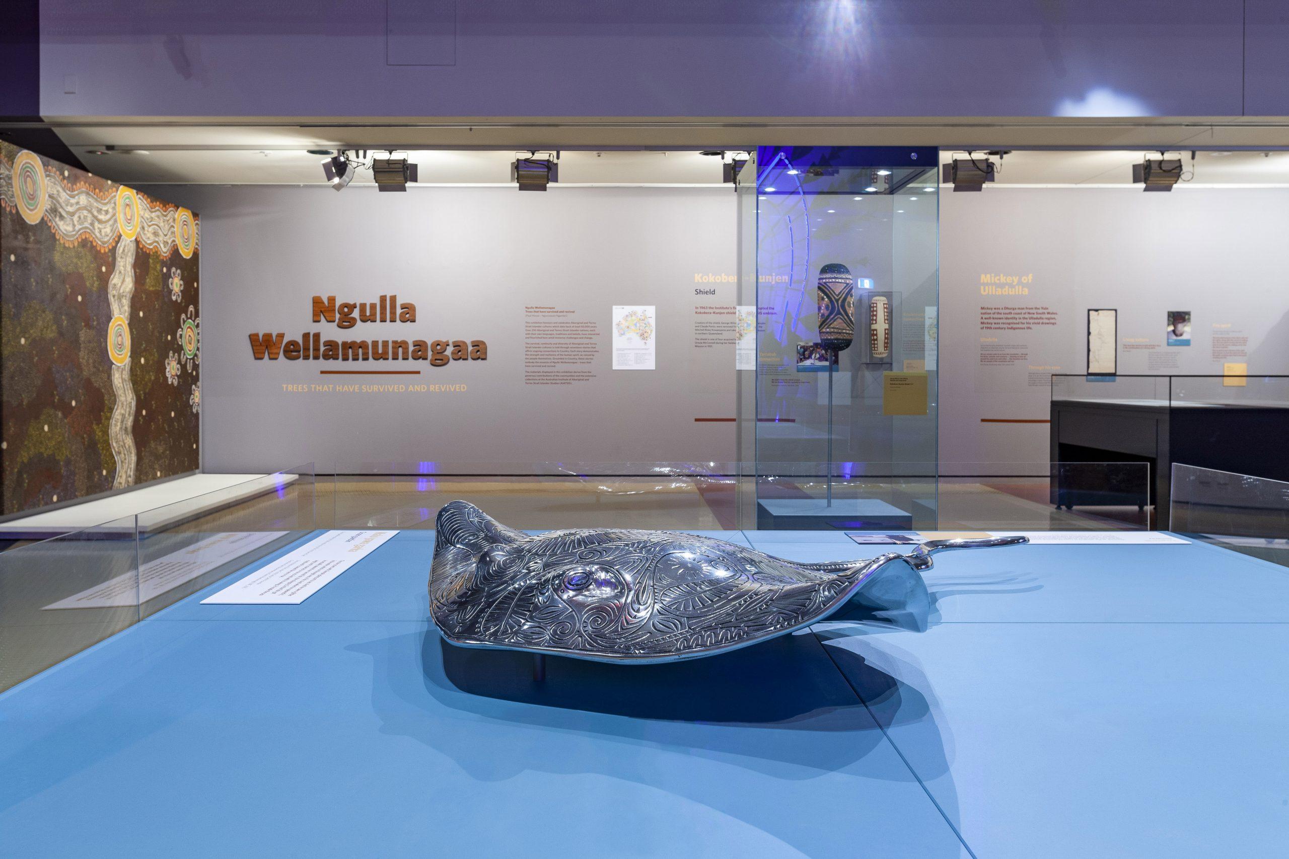 Ngulla Wellamunagaa exhibition